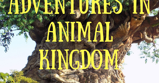 Our adventures in Disney World- Animal Kingdom