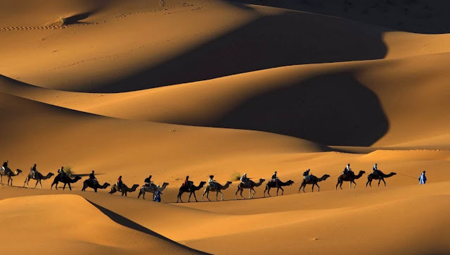 melewati padang pasir