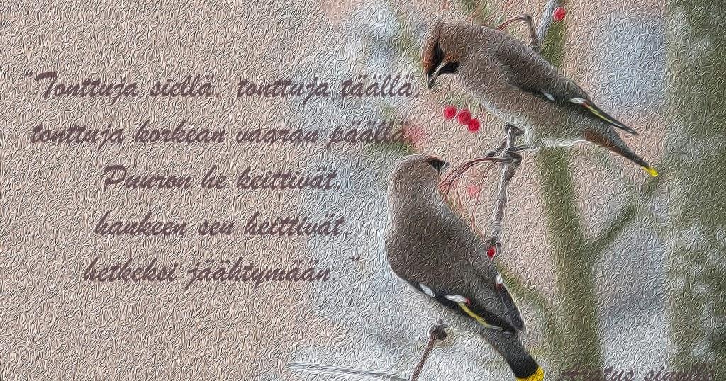 Itsenäisyyspäivä Runo