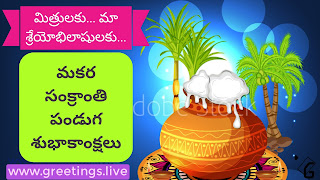 Sugar canes full Pongal pot Sankranti Festival Wishes in Telugu Language