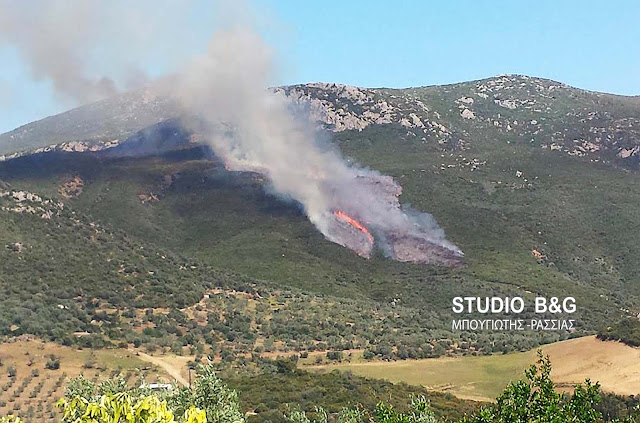 Υψηλός κίνδυνος πυρκαγιάς (επίπεδου 3) και για την Αργολίδα την Τετάρτη