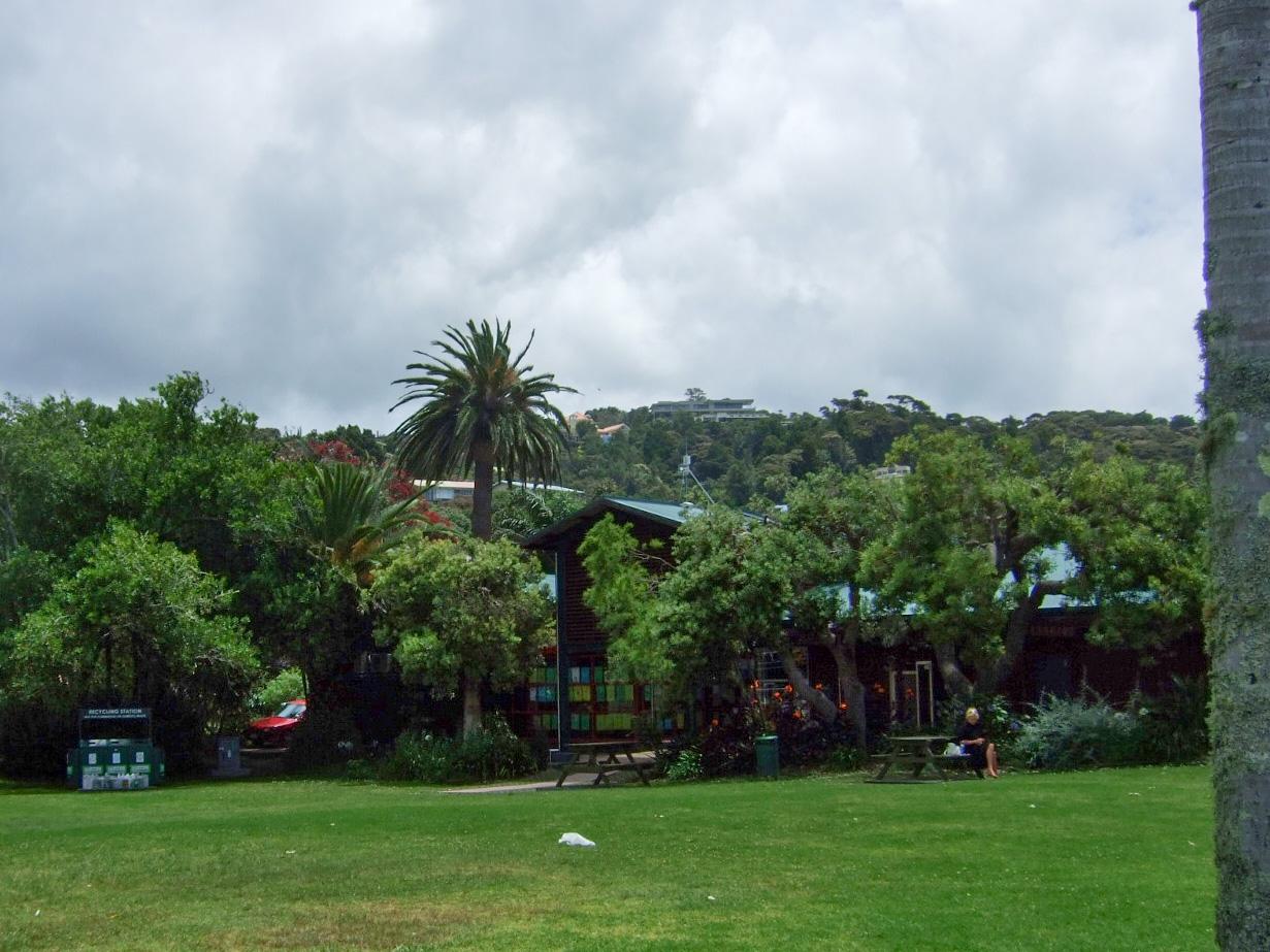 芝生,森林,パイヒア,NZ〈著作権フリー無料画像〉Free Stock Photos