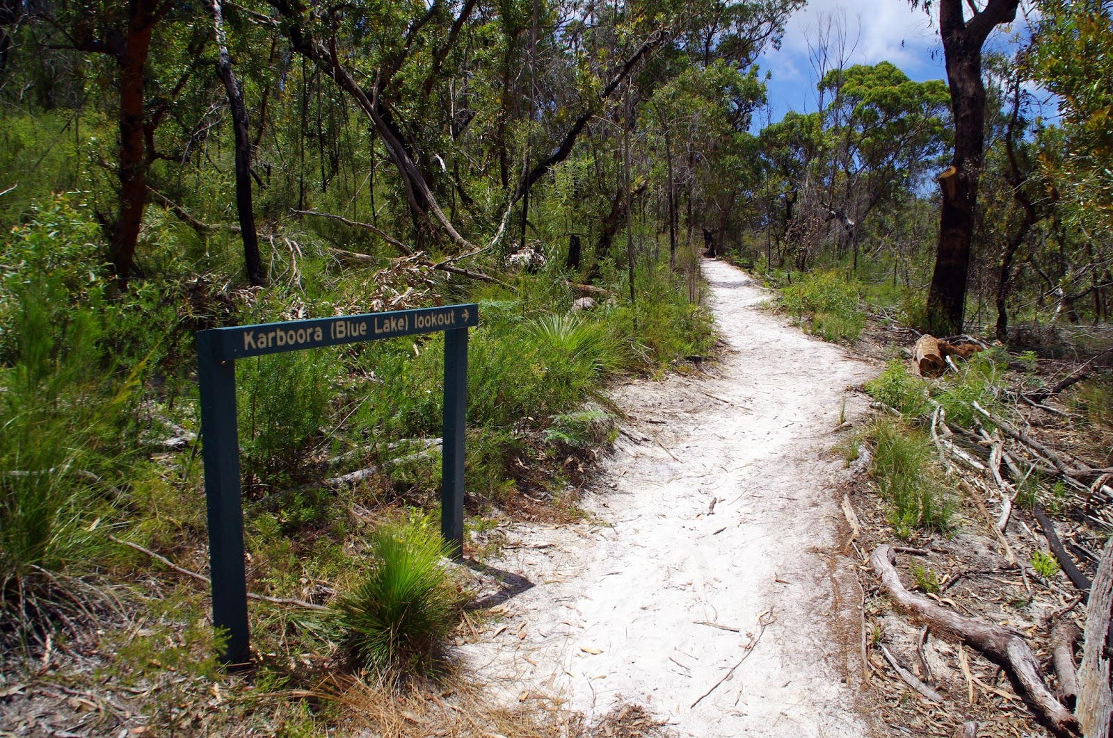 Hike to Blue Lake Stradbroke Island