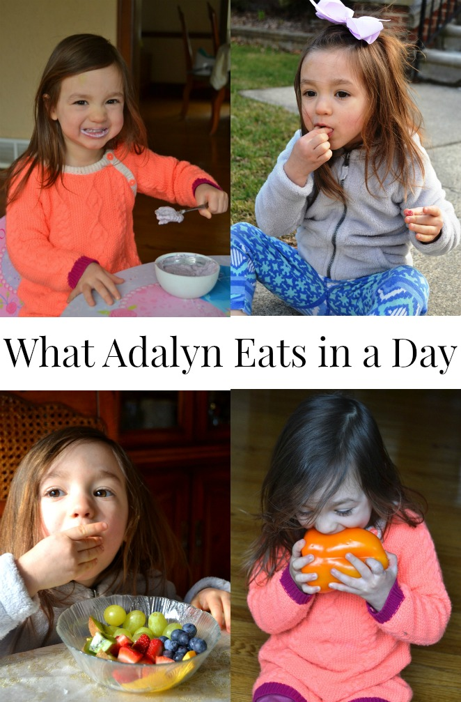 What a 2 1/2 year old toddler eats in a day.