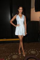 Shanvi Looks super cute in Small Mini Dress at IIFA Utsavam Awards press meet 27th March 2017 54.JPG