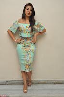 Nikki Galrani in Cute Dress Dress At Marakathamani Success Meet ~  Exclusive 022.JPG