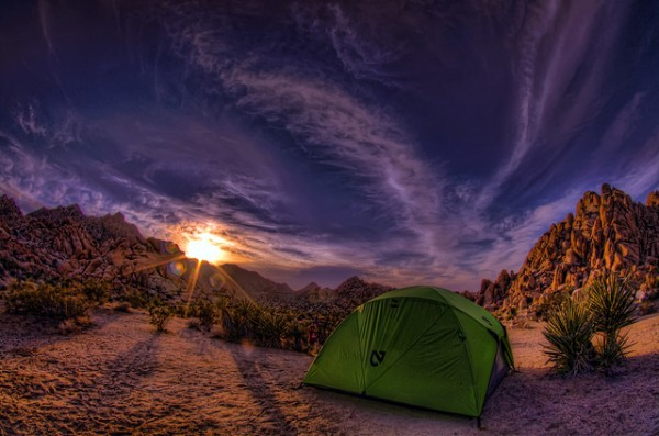 Joshua Tree Camping by ltus