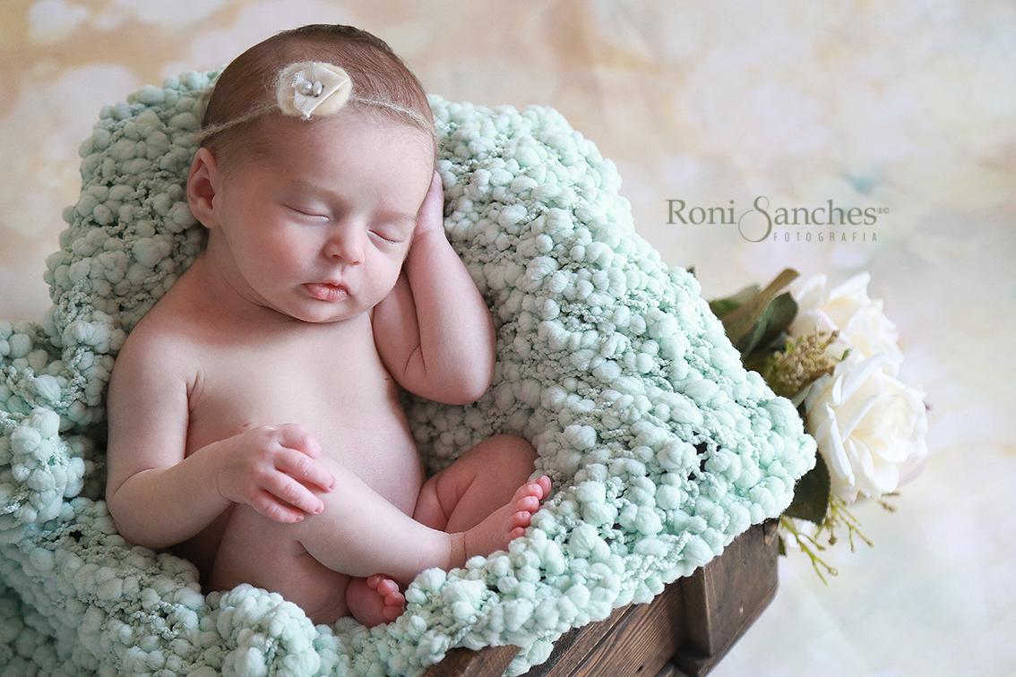 Newborn Book Gestante E Book Bebê Em Sp