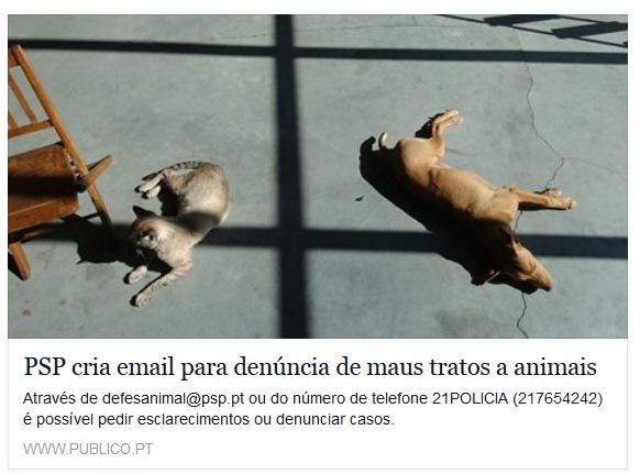 http://www.publico.pt/sociedade/noticia/psp-cria-email-para-denuncia-de-maus-tratos-a-animais-1702923