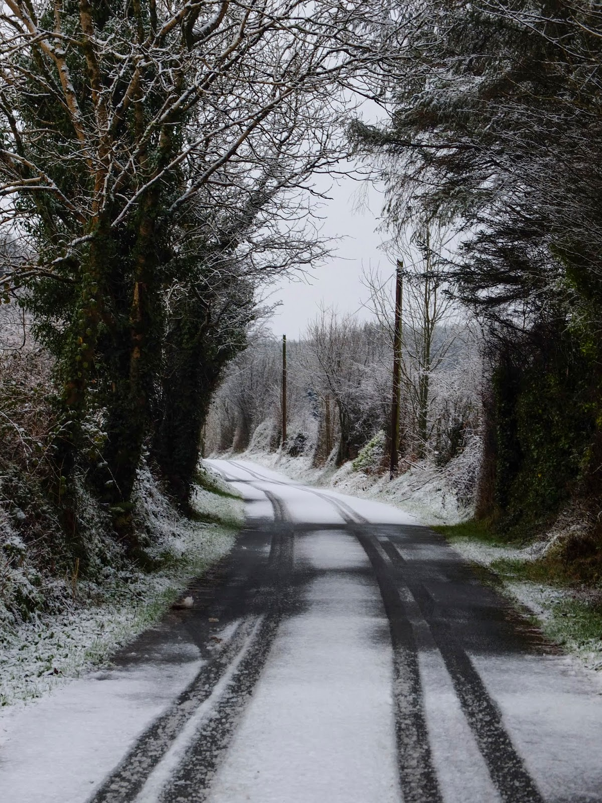 Snow capped country road in the Boggeragh Mountains, Co.Cork.