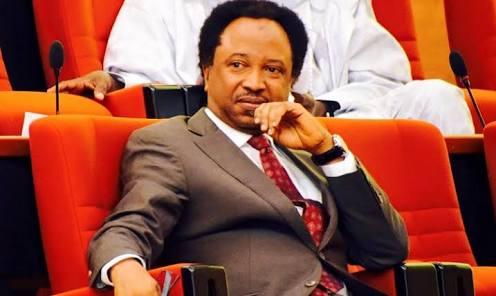 Nigerian Senators Receive N13.5M 'Running Cost' Every Month - Senator Shehu Sani