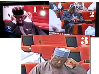 Senator Barnabas Gemade caught sleeping during plenary...for the 3rd time in one year