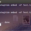 Hide a text file inside a Image file using steghide in Linux