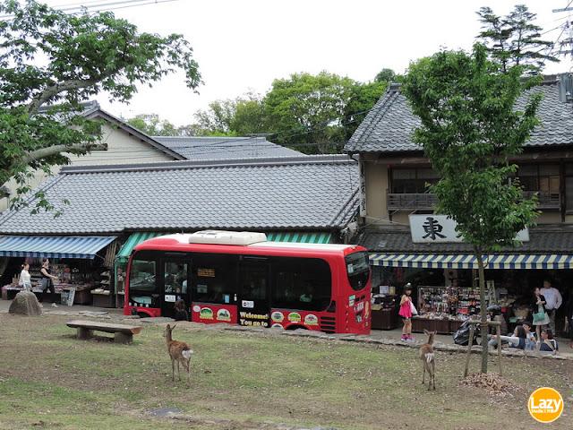細小的Hino Poncho有助穿越奈良公園多個地點。