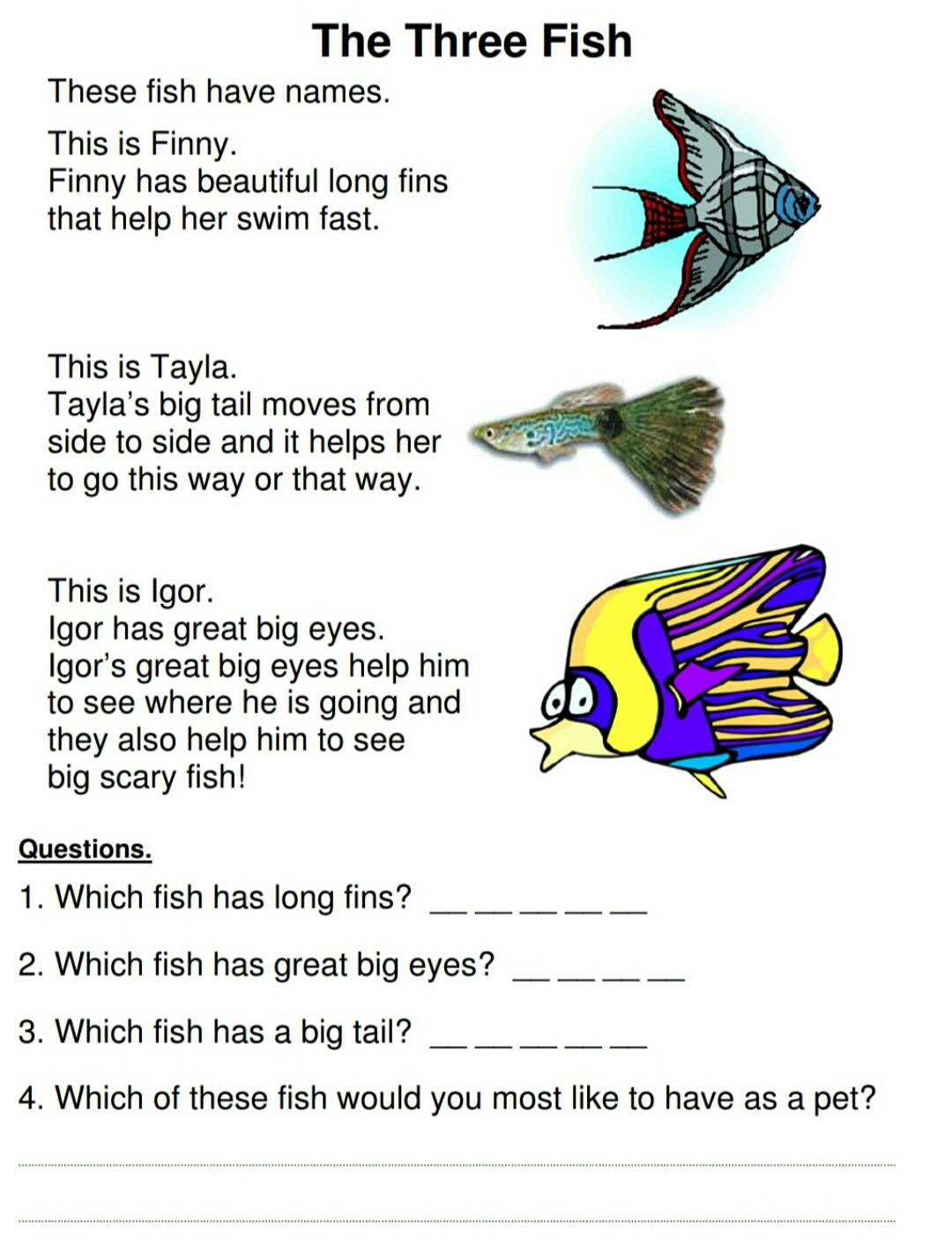 Download Reading Comprehension For Kindy Kids