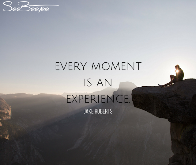 9. Every moment is an experience. - Jake Roberts