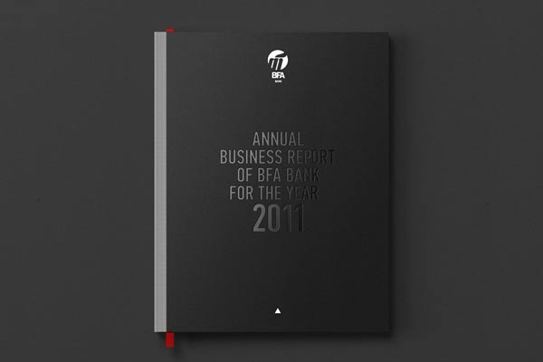 Graphic Designer Annual Reports