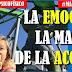 La emoción es la madre de la acción #MartesCoach @SchmitzOscar @EPsicofisico