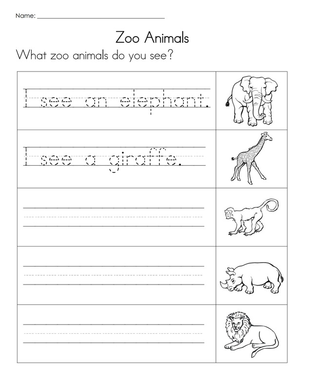 animal worksheet new 705 animal writing worksheet. Black Bedroom Furniture Sets. Home Design Ideas