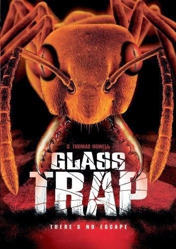 Glass Trap - Formiche Assassine