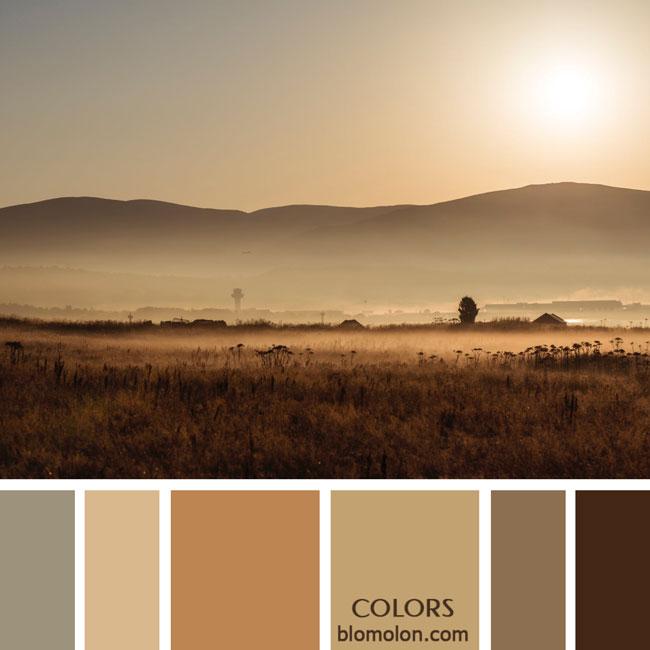 variedad_en_color_paletas_de_colores_67