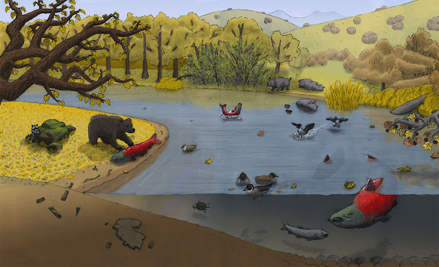 Giant extinct salmon fought with spike teeth during upriver spawning events