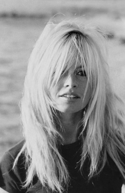 Extensions By Melissa Brown Brigitte Bardot Hair