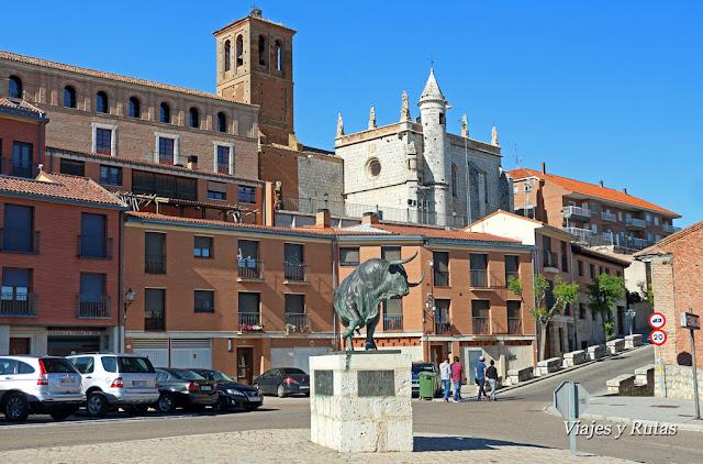 Toro de la Vega Tordesillas, Valladolid