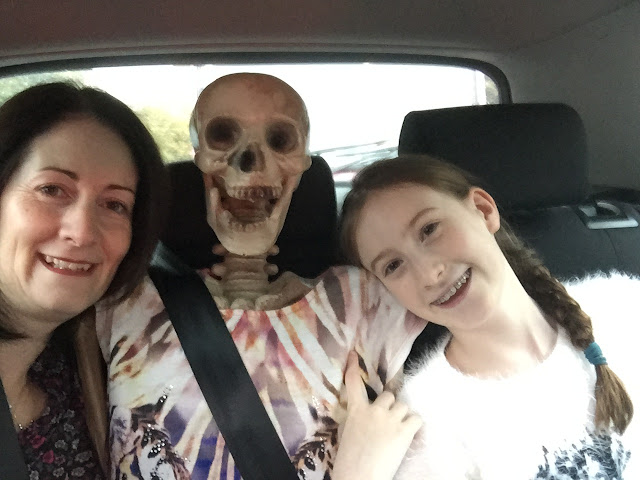 Skeleton in back seat of car