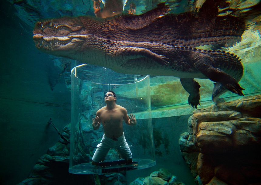 13. Crocosaurus Cove, Australia