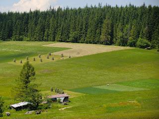 Campos de cultivo en Butorowy Wierch, Zakopane