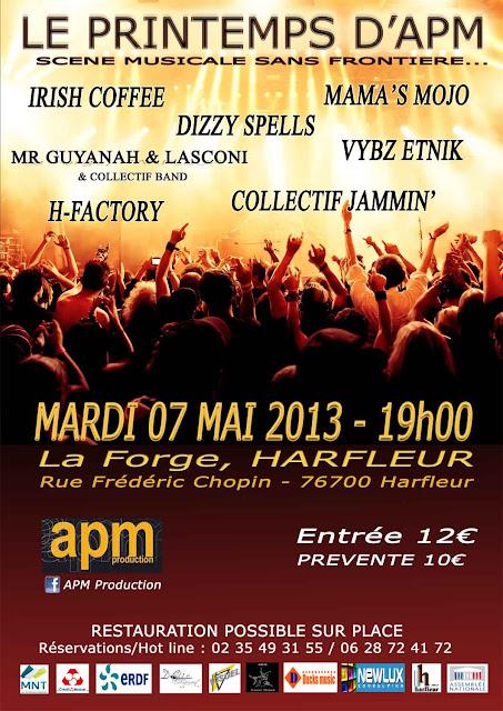 collectif-jammin-concert-mai-2013-harfleur-le-havre