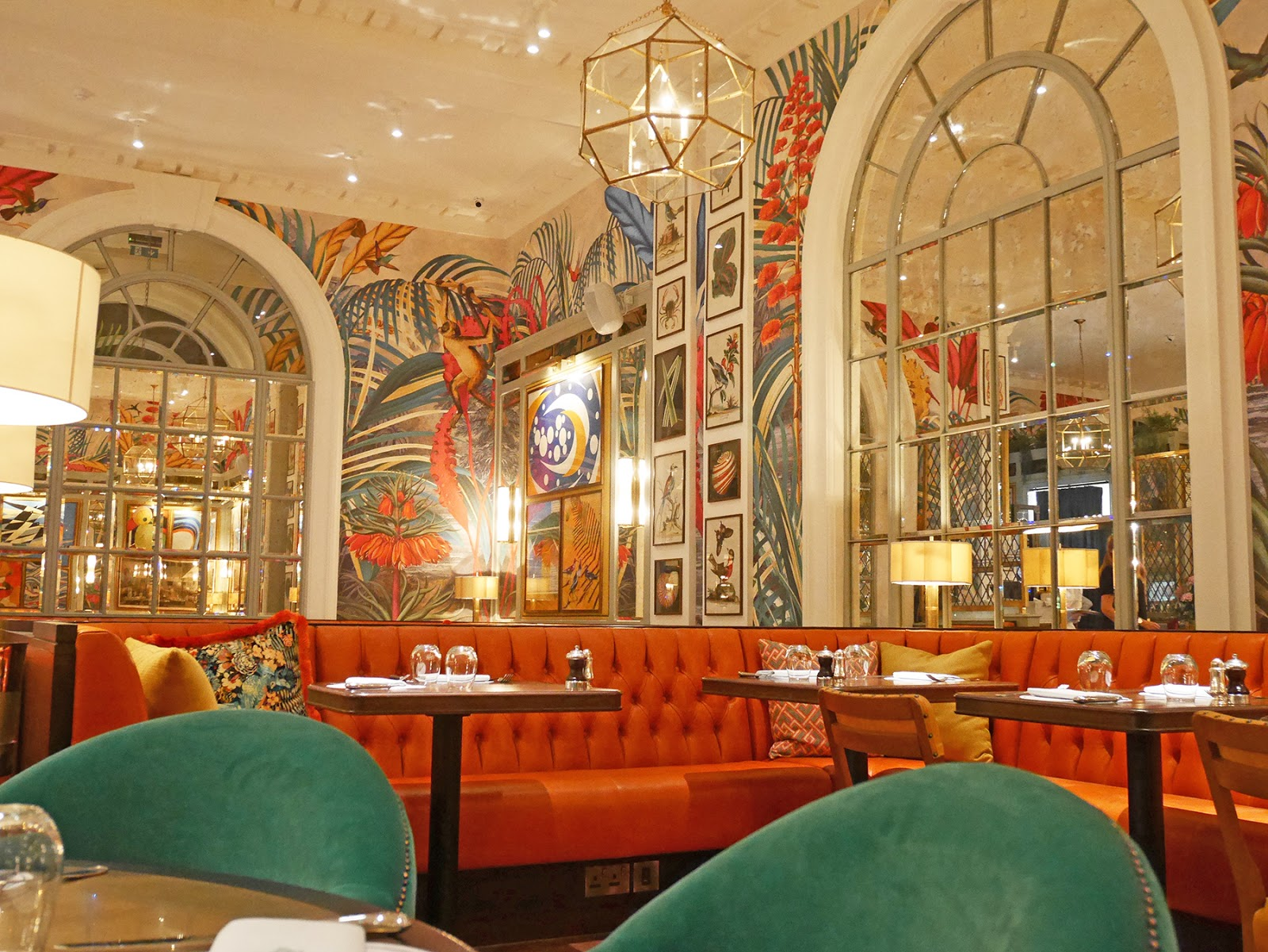 Review the ivy in the lanes brighton the graphic - Ivy interior design software reviews ...