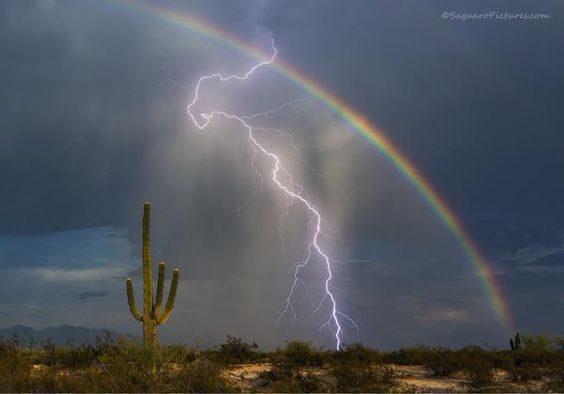 地球の美しさと出会える絶景?美しい虹の種類と画像14枚 雷と虹