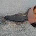RADIO KAMELEON - Još jedan od dokaza zašto je načelnik Edin Delić na pravom mjestu!