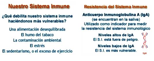 Xananatura alimentaci n y sistema inmunol gico - Alimentos sistema inmunologico ...