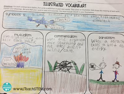 What does word study look like in an upper elementary science classroom? Content vocabulary and root words. Breaking down words and making connections through visuals and common experiences enables students to better understand the meaning of complex science words.