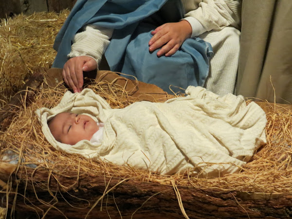 Christmas Traditions - Alpine Live Nativity