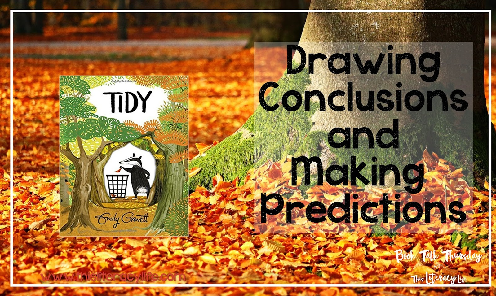 Drawing conclusions isn't always easy, but Tidy is a great book for helping children understand this important concept.