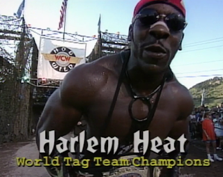 WCW HOG WILD 1996 REVIEW: Harlem Heat defended the tag titles against the Steiner Brothers
