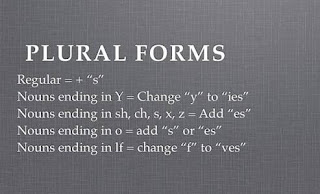 Some English words whose plural forms you may not know