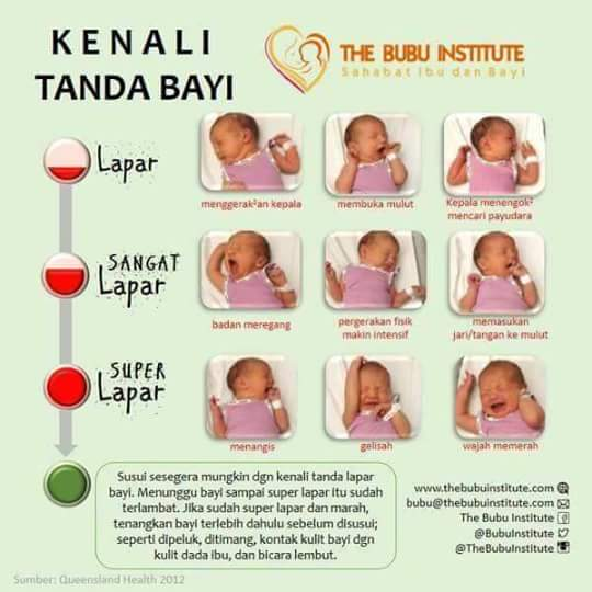 tanda bayi lapar, gaya bayi lapar