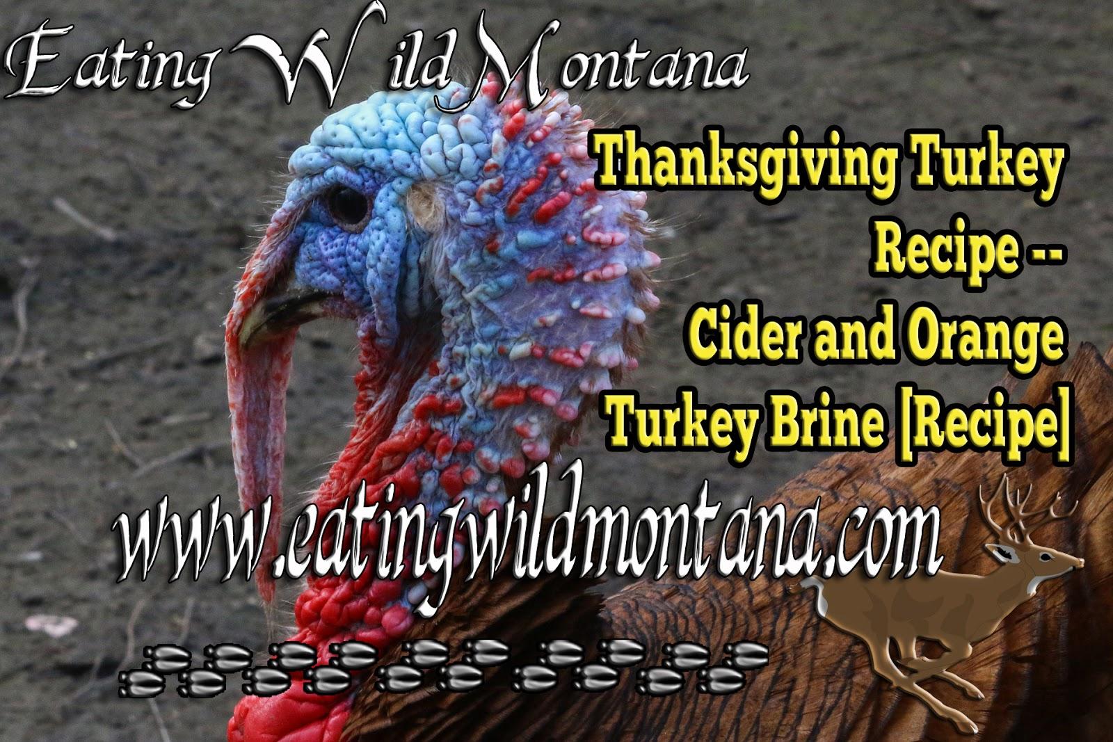 Thanksgiving Turkey Recipe Cider And