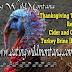 Thanksgiving Turkey Recipe -- Cider and Orange Turkey Brine [Recipe]