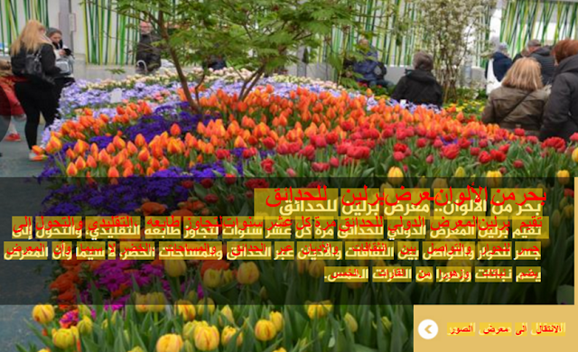 ocr arabic free download  best arabic ocr  ocr arabic تحميل  google ocr  convert jpg to word online  free ocr برنامج  افضل برنامج ocr عربي  ocr text