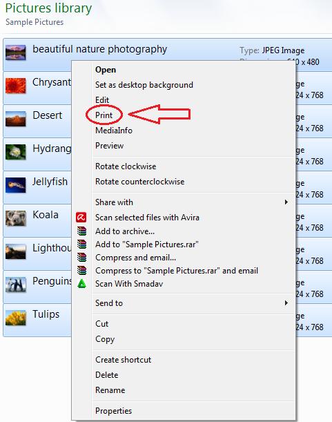 Cara Print Banyak Gambar Menjadi Satu Halaman ~ Cari2-Cara