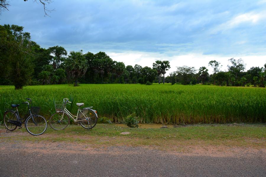 świątynia Ta Som, Angkor