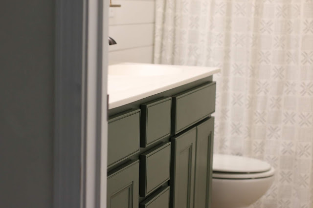 Sherwin Williams Rosemary painted bathroom vanity