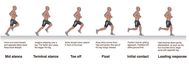 The Phases of Running - El Paso Chiropractor