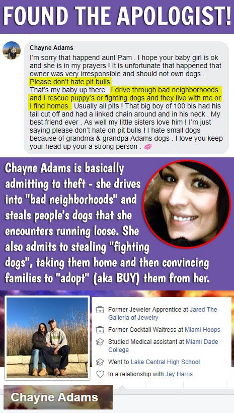 Four legged friends and enemies Florida Woman outraged after